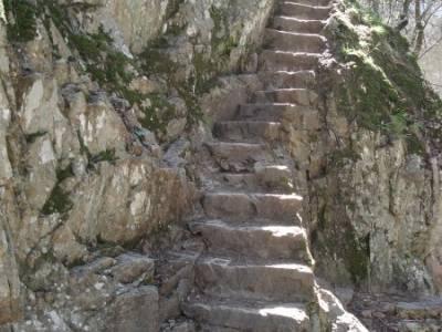 Azud del Mesto - Cascada del Hervidero;senderismo guadalajara arbol tejo rutas cerca de madrid